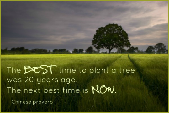 The best time to plant a tree was 20 years ago. The second best time is now.